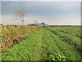 TL6350 : Footpath from Weston Woods Farm by Hugh Venables