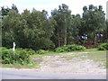 TM3856 : Footpath to Sandlings Walk by Adrian Cable