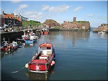 NT6779 : Victoria Harbour, Dunbar by Bob Jones