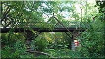 TQ3472 : Pissarro's Bridge by Roger W Haworth
