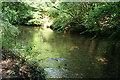 SX5259 : Plymouth: river Plym by Martin Bodman