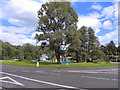 SJ8986 : Bramhall Green Roundabout by David Dixon