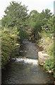 SS9084 : The Afon Garw/River Garw at Brynmenyn by eswales