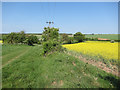TL5948 : Farmland by the Roman Road by Hugh Venables