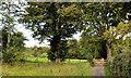 J3268 : Path and gate, Minnowburn, Belfast by Albert Bridge