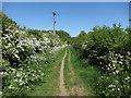 TL5547 : Path to Hildersham by Hugh Venables