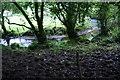 SN0434 : Afon Gwaun by Bill Boaden