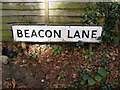 TM2447 : Beacon Lane sign by Adrian Cable