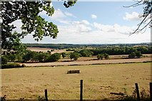 SO8185 : Grassland from the Sheepwalks  Lane by Mick Malpass