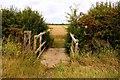 SU4694 : Footbridge on the bridleway by Steve Daniels