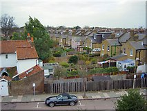 TQ1572 : Gardens of Radnor Gardens - a rooftop view by Rob Gill