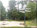 SU8764 : Upper Star Post, Swinley Forest by Colin Smith