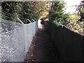 TQ3966 : Footpath to Trepigs Lane by David Anstiss