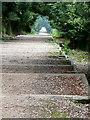 SU9084 : Cliveden, 177 steps by Graham Horn