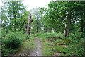 SU9130 : Footpath, Ridden Corner by N Chadwick