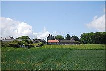 NU2422 : Dunstan Stead by N Chadwick