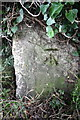SU5494 : Benchmark on concrete block beside road by Roger Templeman