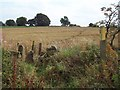 SK3464 : Footpath and Squeezer Stile near Hilltop by Jonathan Clitheroe