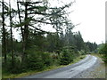 NX5972 : Forest road near Shaw Hill by Bob Peace