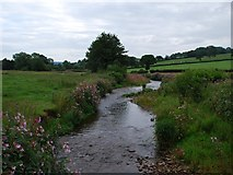 ST2506 : River Yarty by William Cooke