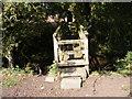 SO9155 : Moor End Footbridge by Gordon Griffiths
