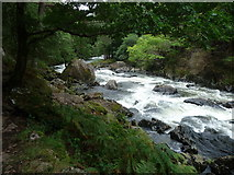 SH5946 : The Afon Glaslyn in the Pass of Aberglaslyn by Jeremy Bolwell