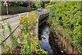 J3973 : The Knock River, Belfast (7) by Albert Bridge