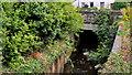 J3973 : The Knock River, Belfast (8) by Albert Bridge