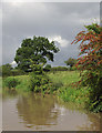SJ6761 : Canal and fields north-east of Church Minshull, Cheshire by Roger  Kidd