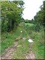SE2087 : Bridleway at Ashley Hill by Gordon Hatton