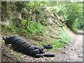 SU7337 : Dead Rubber by Colin Smith