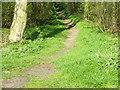 NU2321 : Footpath near Spitalford by Maigheach-gheal