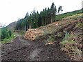 NM4750 : Forestry on the slopes above Loch Frisa by Oliver Dixon