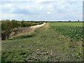 SK6837 : Farm track by Alan Murray-Rust