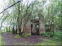 SK2563 : Derelict building above Endcliffe Quarry by Graham Hogg
