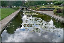SP0343 : Lily Ponds - Evesham by Colin Babb