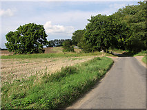 TF8707 : Approaching the unbridged ford on Brown's Lane, Holme Hale by Evelyn Simak