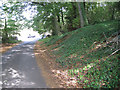 SP2581 : Ivy-clad bank, Church Lane  by Robin Stott