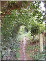 TM3569 : Footpath to the A1120 Hackney Road by Adrian Cable