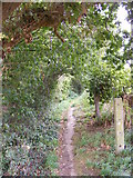 TM3569 : Footpath to the A1120 Hackney Road by Geographer