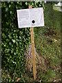 TM3966 : Footpath amendment Notice on Kelsale footpath No.17 by Geographer