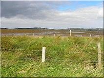 C4548 : Trawbreaga Bay (1) by Kenneth  Allen