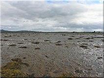 C4448 : Trawbreaga Bay (4) by Kenneth  Allen