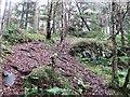 NS9974 : Crag, Hay Hill by Richard Webb