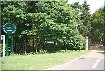TG1607 : Colney Woodland Burial Park by N Chadwick