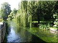 SU3940 : River Test, Wherwell by Maigheach-gheal