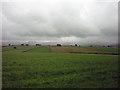 NY6407 : Pastures near Raisbeck by Karl and Ali
