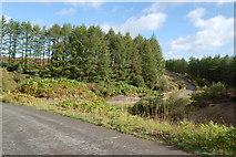 SE7995 : Windy road near Keys Beck by SMJ