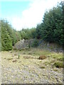 NX6982 : Disused Quarry in Corriedoo Forest by Bob Peace