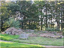 NY9449 : (Remains of) pele tower in the grounds of St. James's Church, Hunstanworth by Mike Quinn
